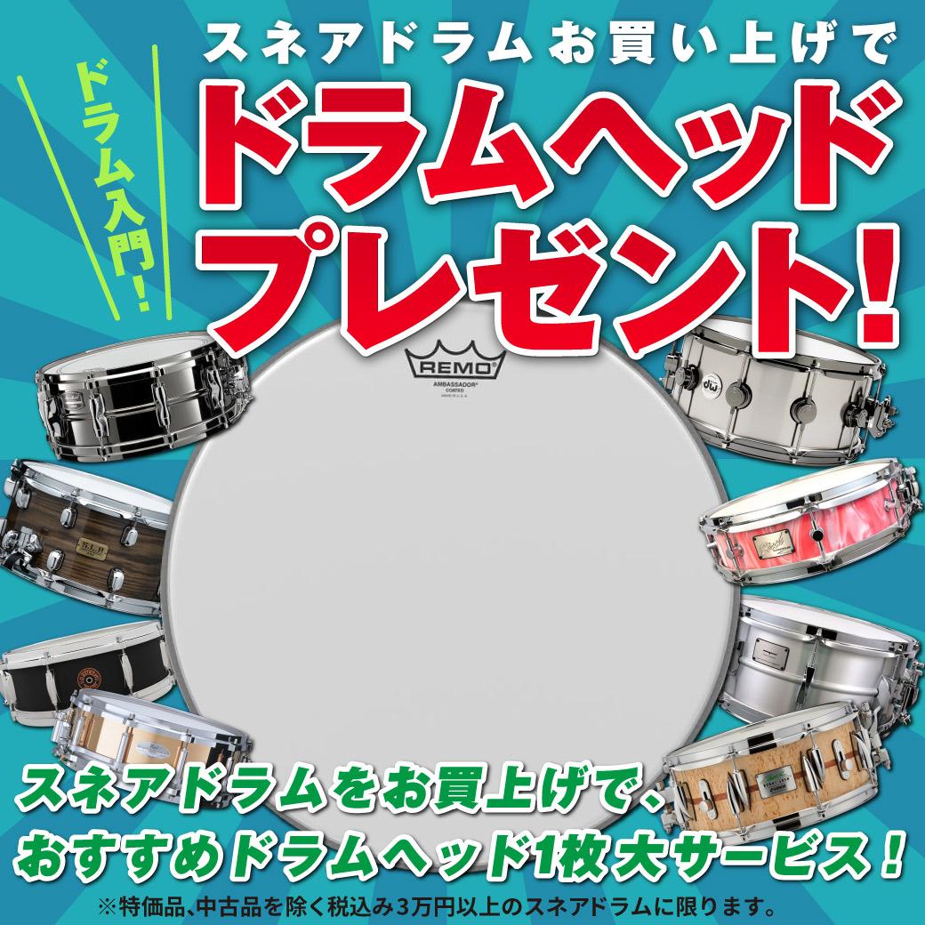ドラム入門!スネアドラムお買い上げでドラムヘッドプレゼント!