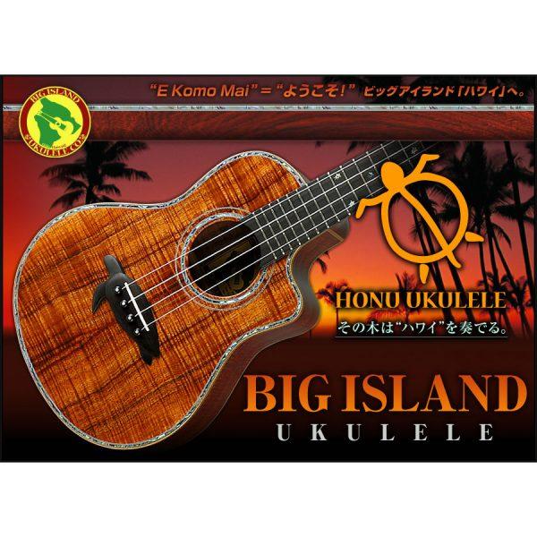 "BIG ISLAND UKULELE – その木は""ハワイ""を奏でる"