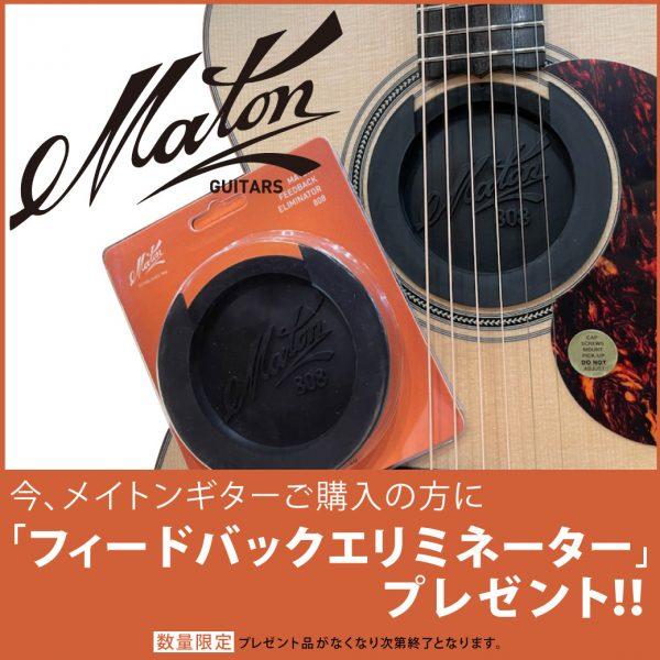 【数量限定】メイトンギターご購入の方に「フィードバックエリミネーター」をプレゼント!!