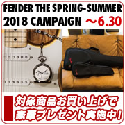 FENDER THE SPRING-SUMMER 2018 CAMPAIGN